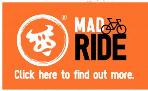 MadCow_Ride